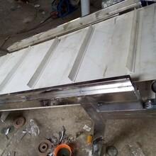 工業鋁型材輸送機皮帶機規格型號含義食品專用輸送機圖片