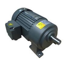 东本DCG减速电机立式/卧式三相减速马达图片