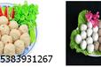 天烨食品科技提供全素丸子制作方法