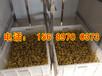 海南全自动豆芽机厂家,大型豆芽机设备,多功能豆芽机价格