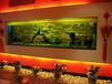 天河区东?#32568;?#23450;做鱼缸厂,广州冼村哪里定做观赏鱼缸,天河汇景新城定做客厅鱼缸