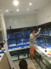 海鲜池定做公司电话咨询海鲜池产品图片