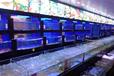 广州海珠海鲜池定做,广州海珠上门安装海鲜鱼池