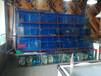 深圳海鮮魚池安裝/光明新區專業安裝海鮮魚池/深圳光明定做海鮮魚池公司