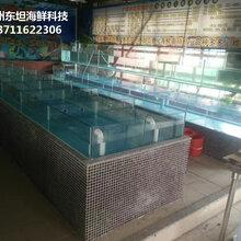 中山海鮮池要什么設備,中山海鮮池設備批發,中山海鮮池循環水泵圖片