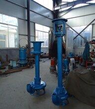 磷化矿渣浆泵钨矿泥浆泵液下排砂泵图片