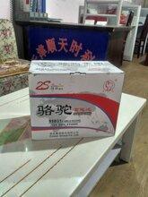 骆驼蓄电池2S55D31天津一级代理商