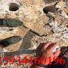 安徽蚌埠霹靂器轉配巖石分裂槍配件