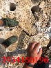 岩石分裂机价格