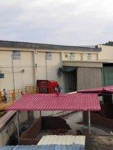 成都合成树脂瓦ASA合成树脂瓦、成都川江红新型建材有限公司图片