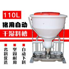 干湿喂料器图片干湿喂料器价格干湿料槽尺寸猪八戒养殖设备自动料槽厂家图片
