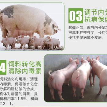 怎样让猪增肥快猪催肥药小肽