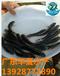 云南昆明哪里有黑鱼苗批发-昆明生鱼苗卖多少钱一尾
