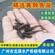 湖南黄颡鱼苗