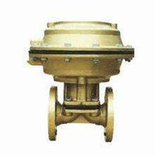 南氟阀门EG641FS气动衬氟隔膜阀产家直销图片