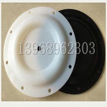 2寸塑料泵配件286-119-600进口四氟PTFE膜片图片