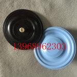帕斯菲达计量泵配件复合隔膜片计量泵膜片铜螺丝DC2-DC6