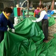 聊城防雨防水篷布遮盖用篷布汽车篷布低价销售