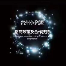贵州茶资源服务型平台