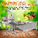 自動氣泡清洗機能洗韭菜的機器自動清洗韭菜用的機器