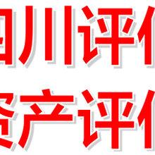 四川成都石灰厂评估技术发明评估维修厂评估图片