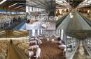 育肥豬資產評估懷孕母豬資產評估養殖場損失評估圖片