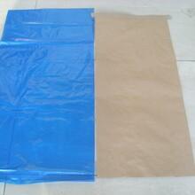 25公斤草莓用牛皮纸敞口袋包装—冷冻草莓出口牛皮纸袋图片