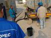 卸车泵卸车泵非离心泵-罗德凸轮转子泵厂家