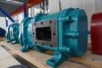 凸轮转子泵_吐鲁番转子泵厂家选型报价_罗德转子泵