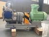 安徽高粘度凸轮转子泵_高粘度凸轮转子泵架构图_罗德转子泵厂家