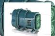 汽油卸车泵厂家排行?罗德弹性体转子泵