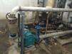 江苏转子泵_污泥转子泵_罗德转子泵品牌