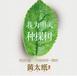 广州黄太纸模式系统专业开发