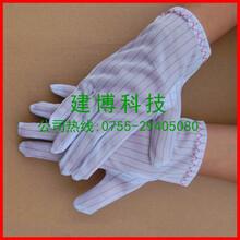 價格最低質量最好的無塵手套防靜電手套防靜電無塵手套圖片
