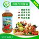 温棚蔬菜种植如何高产种植专用菌种厂家批发