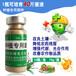 黃瓜萎縮的防治辦法種植好助手植物菌液廠家直銷