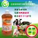粪便发酵菌液专业发酵鸡粪作饲料养鱼肥水