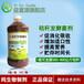 青儲黃儲秸稈飼料發酵菌益富源秸稈發酵劑用法