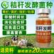 青貯飼料發酵劑貴州四川哪有賣的價格是多少