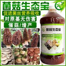 菌菇生态宝的作用原理和使用功效农户首选绿色营养液图片