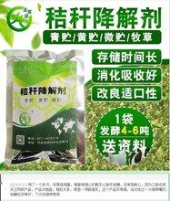 郑州秸秆发酵剂、秸秆发酵菌种图片