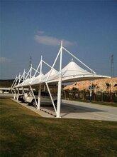 户外网球场膜结构膜结构收费站图片