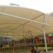 膜結構公交站臺,膜結構收費站,膜結構雨棚,鋼膜結構。圖片