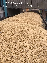 美湾美西乌拉圭巴西阿根廷进口大豆过筛毛粮价格图片