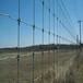 供青海草原围栏网和西宁草原网