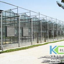 怎样建设温室大棚造价低