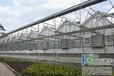 智能溫室大棚造價高的原因?