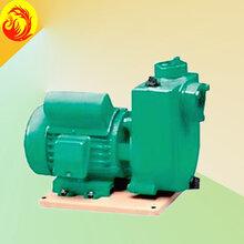 威乐水泵PU1500E农工业用泵深圳德国威乐WILO水泵销售