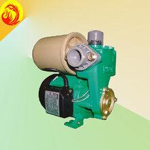 威乐WILO水泵,PW-175EAH自吸式增压泵,德国威乐水泵
