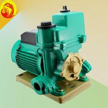 威乐WILO水泵,PW-251EH热水循环泵,德国威乐水泵